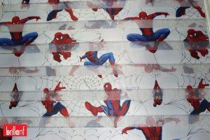 orumcek-adam-zebra-spider-man